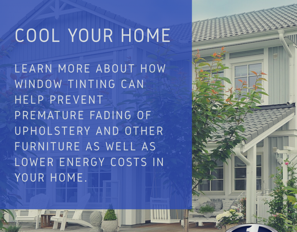 home window tinting info palm beach
