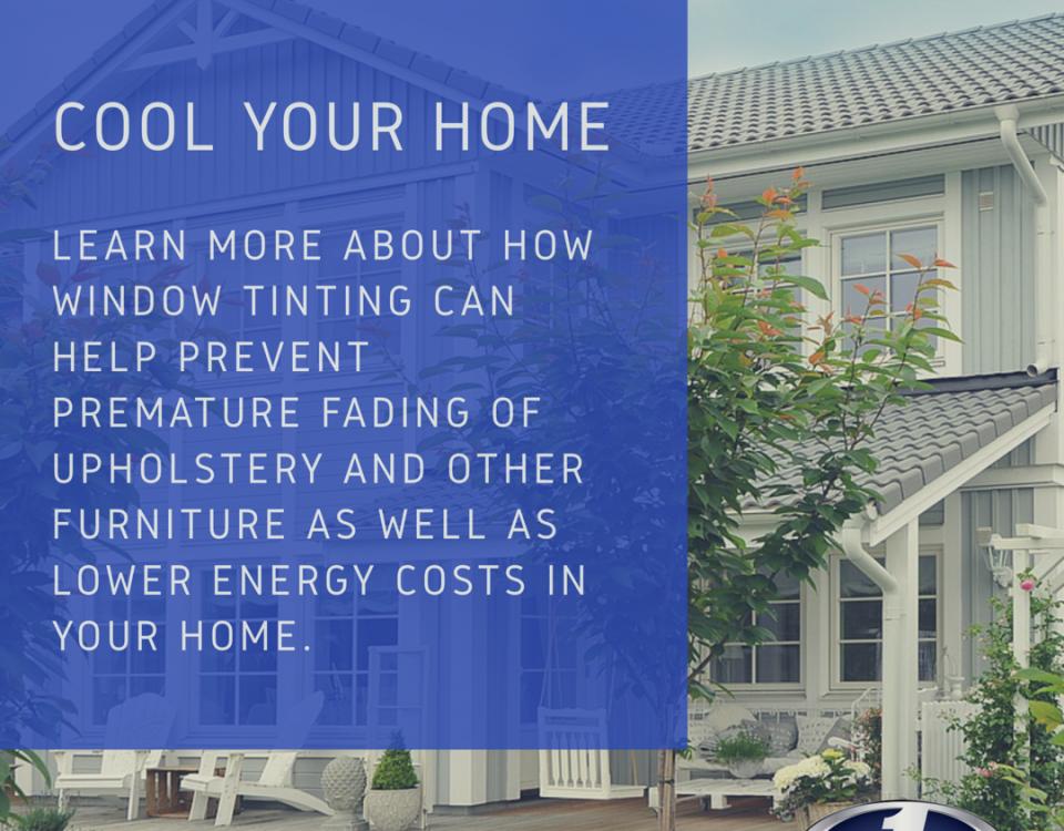 home window tinting info palm beach